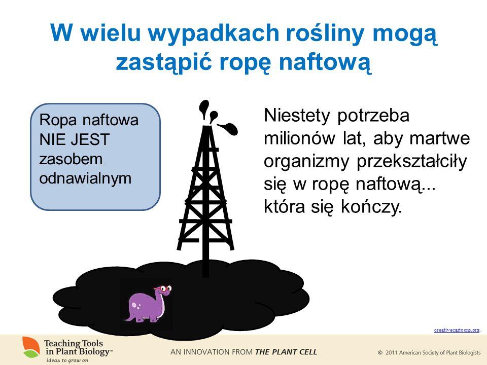 W wielu wypadkach rośliny mogą zastąpić ropę naftową creativecartoons.org creativecartoons.org.
