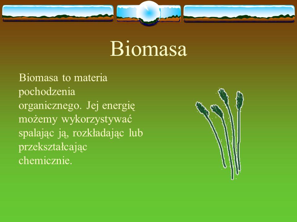 Biomasa Biomasa to materia pochodzenia organicznego. Jej energię możemy wykorzystywać spalając ją, rozkładając lub przekształcając chemicznie.