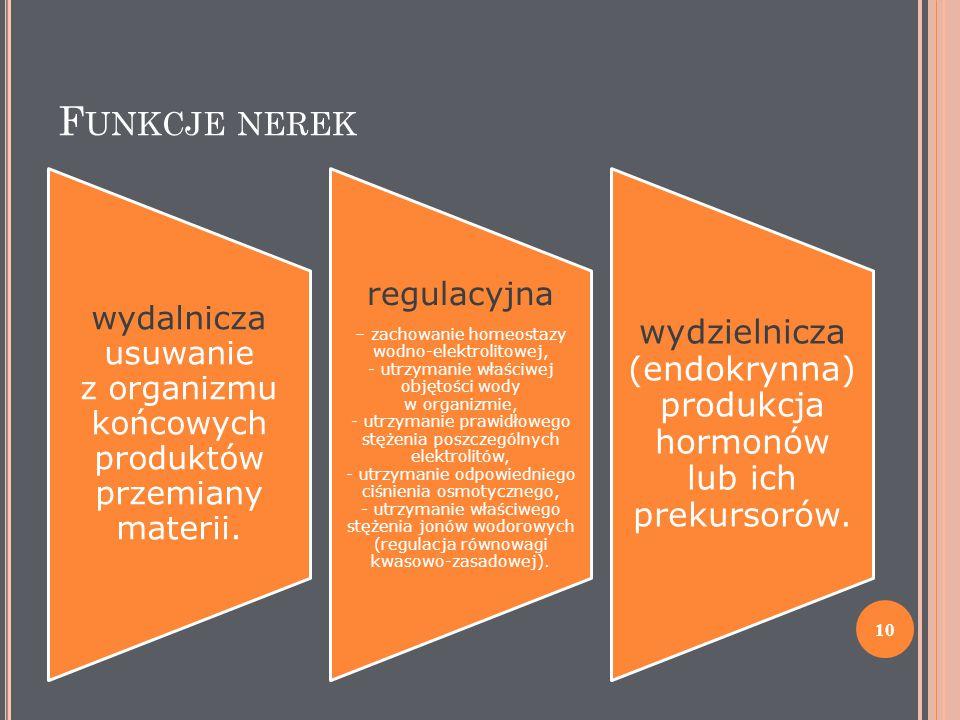 F UNKCJE NEREK wydalnicza usuwanie z organizmu końcowych produktów przemiany materii. regulacyjna – zachowanie homeostazy wodno-elektrolitowej, - utrz