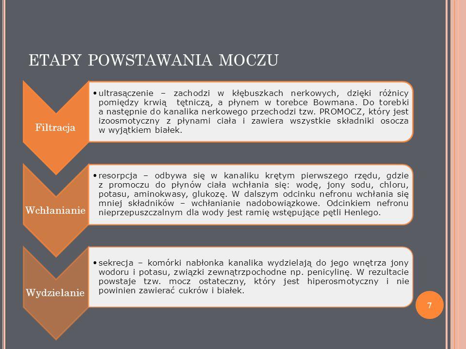 ETAPY POWSTAWANIA MOCZU www.es.wikipedia.org 8