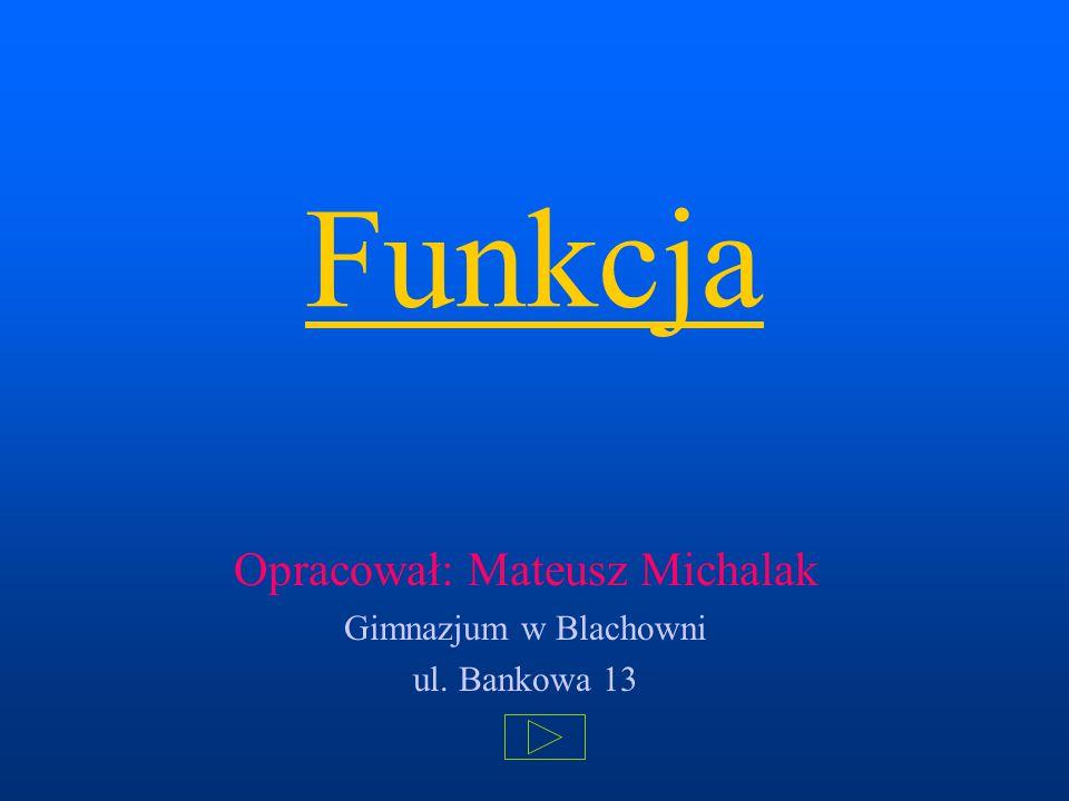 Funkcja Opracował: Mateusz Michalak Gimnazjum w Blachowni ul. Bankowa 13