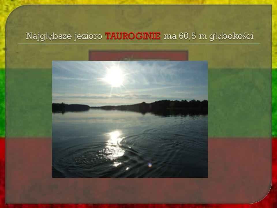 W obawie przed najazdem Krzy ż aków, Litwa zawi ą za ł a Uni ę z Polsk ą.