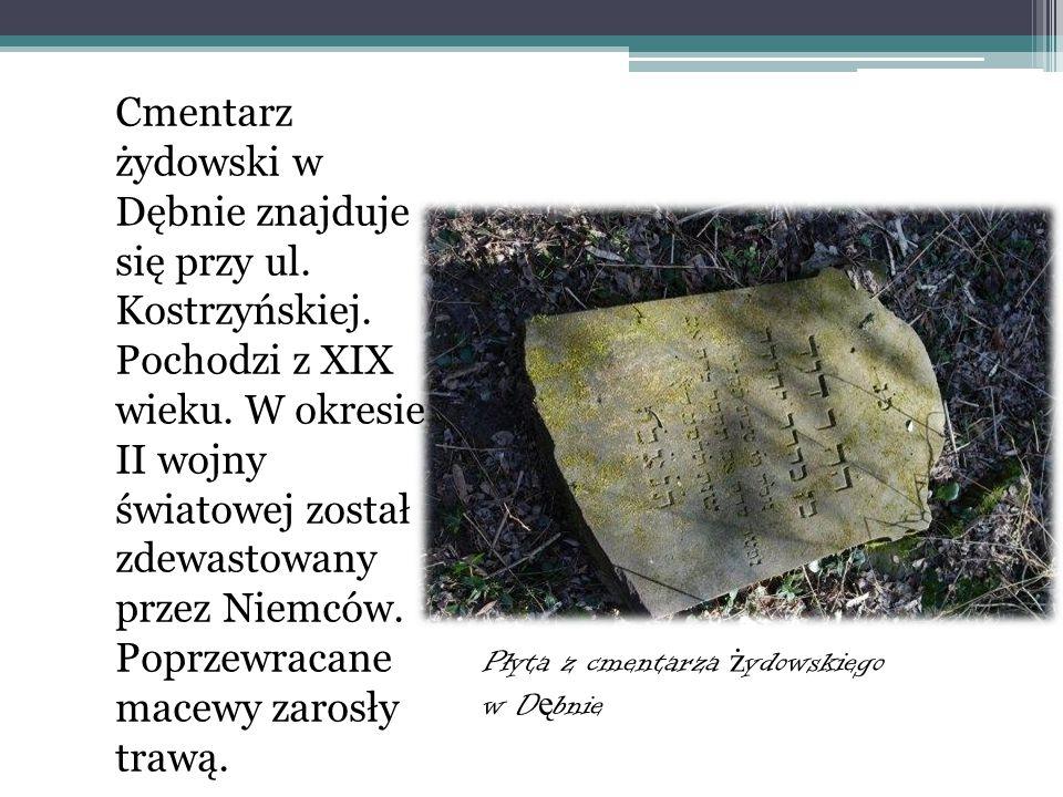 Cmentarz żydowski w Dębnie W 1995 r. grupa jedenastu młodych mieszkańców Dębna przejęta losem i stanem żydowskiej nekropolii złożyła wniosek w Zarządz
