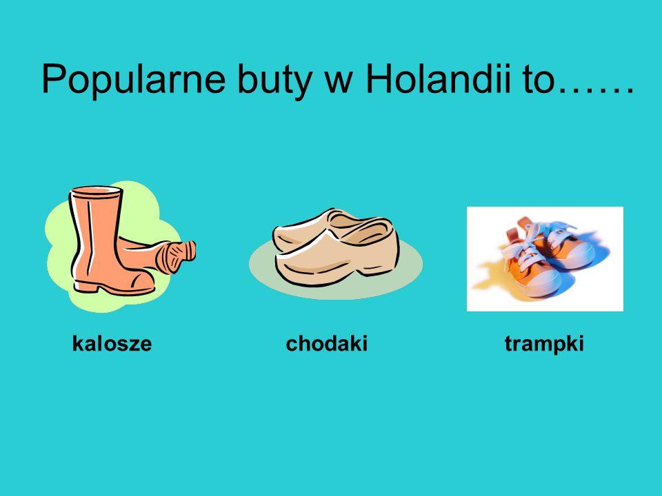 Popularne buty w Holandii to…… kaloszechodakitrampki