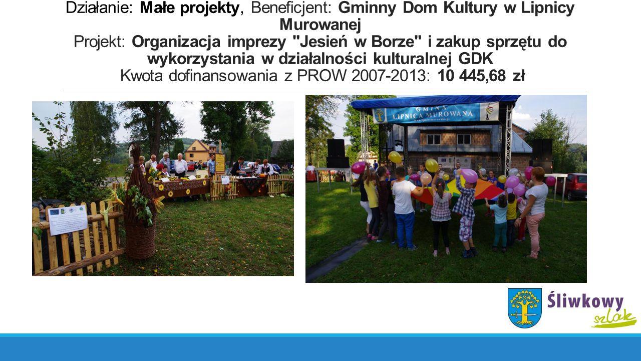 Działanie: Małe projekty, Beneficjent: Gminny Dom Kultury w Lipnicy Murowanej Projekt: Organizacja imprezy