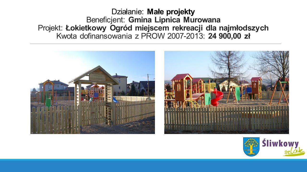 Działanie: Małe projekty Beneficjent: Gmina Lipnica Murowana Projekt: Budowa placu zabaw dla najmłodszych w miejscowości Rajbrot Kwota dofinansowania z PROW 2007-2013: 24 999,00 zł
