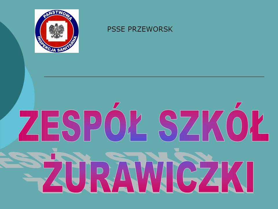 PSSE PRZEWORSK