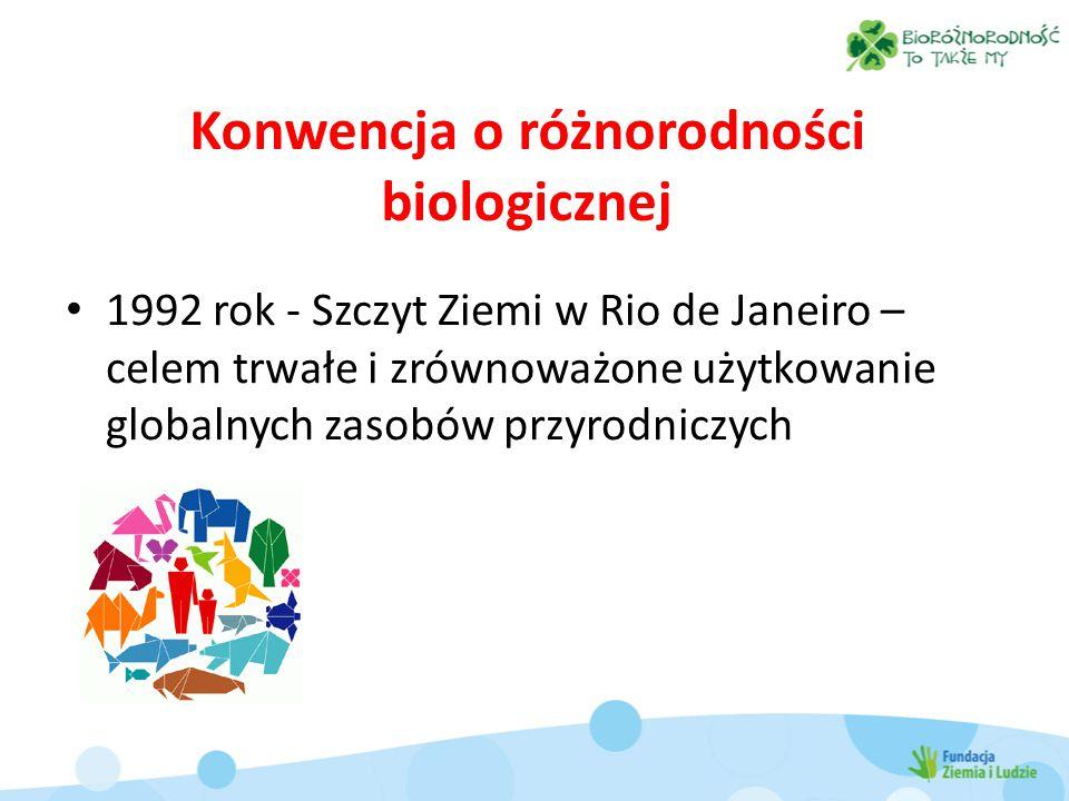 Konwencja o różnorodności biologicznej 1992 rok - Szczyt Ziemi w Rio de Janeiro – celem trwałe i zrównoważone użytkowanie globalnych zasobów przyrodniczych