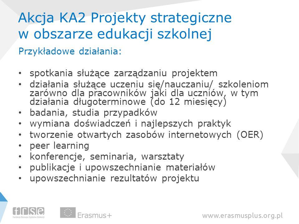 Akcja KA2 Projekty strategiczne w obszarze edukacji szkolnej Przykładowe działania: spotkania służące zarządzaniu projektem działania służące uczeniu
