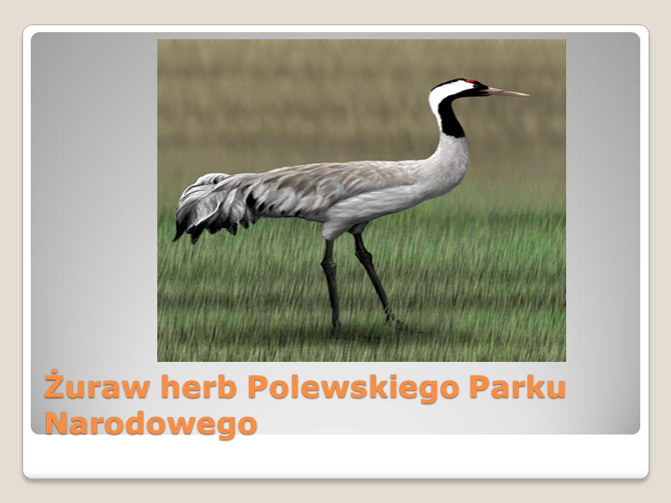 Żuraw herb Polewskiego Parku Narodowego