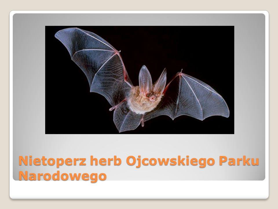 Nietoperz herb Ojcowskiego Parku Narodowego