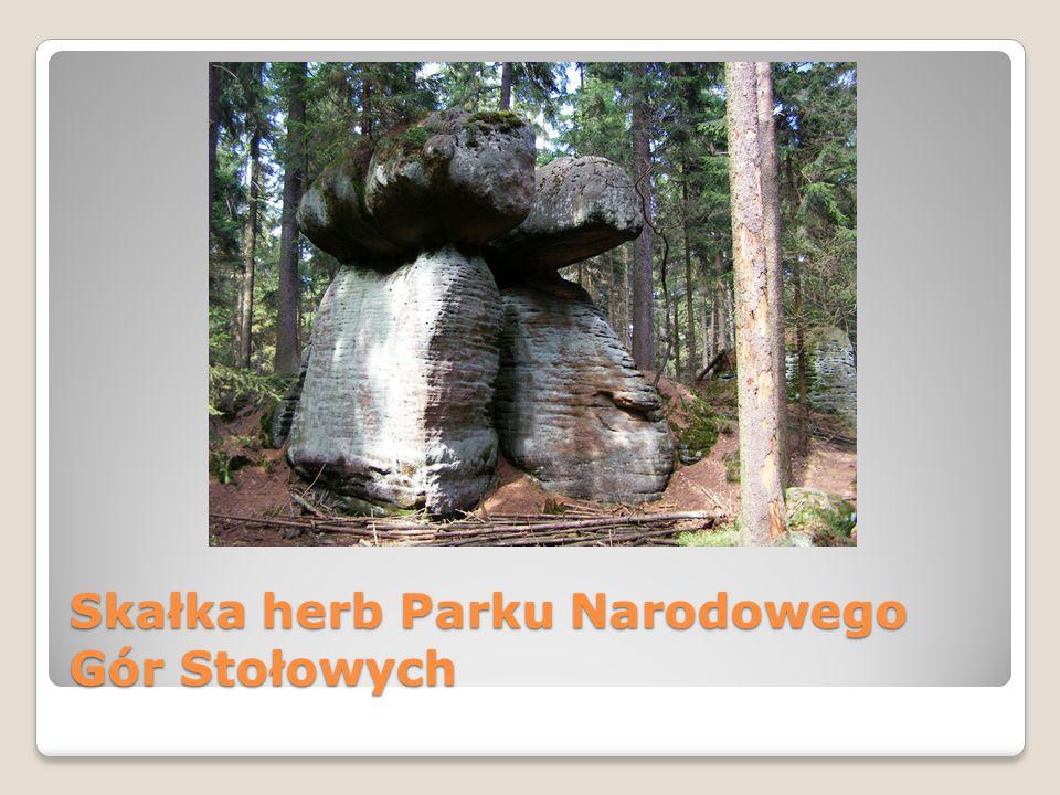 Skałka herb Parku Narodowego Gór Stołowych