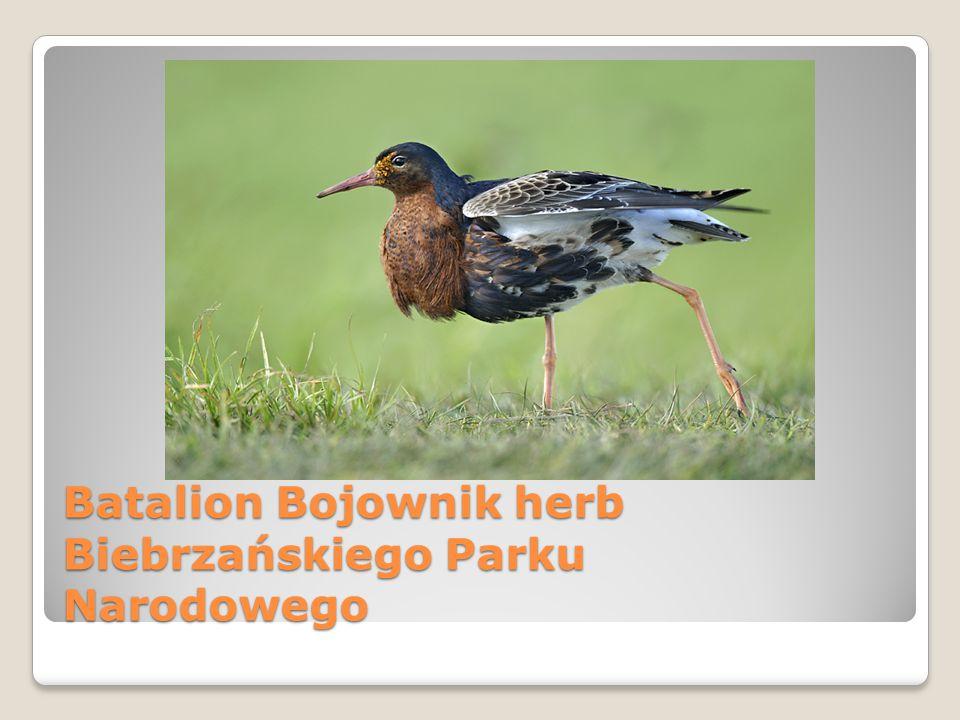 Batalion Bojownik herb Biebrzańskiego Parku Narodowego