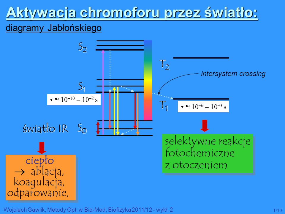 Wojciech Gawlik, Metody Opt. w Bio-Med, Biofizyka 2011/12 - wykł. 2 1/13 S0 S0 S0 S0 S1S1S1S1 S2S2S2S2 T1T1T1T1 T2T2T2T2   10 –10 – 10 –8 s   10 –