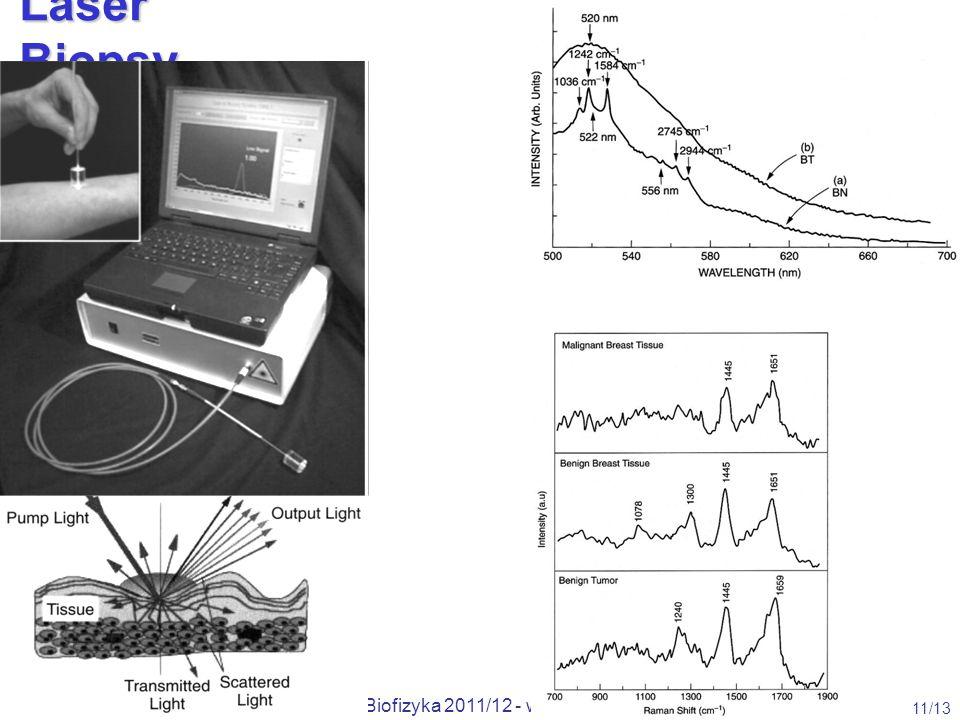 Wojciech Gawlik, Metody Opt. w Bio-Med, Biofizyka 2011/12 - wykł. 2 11/13 Laser Biopsy