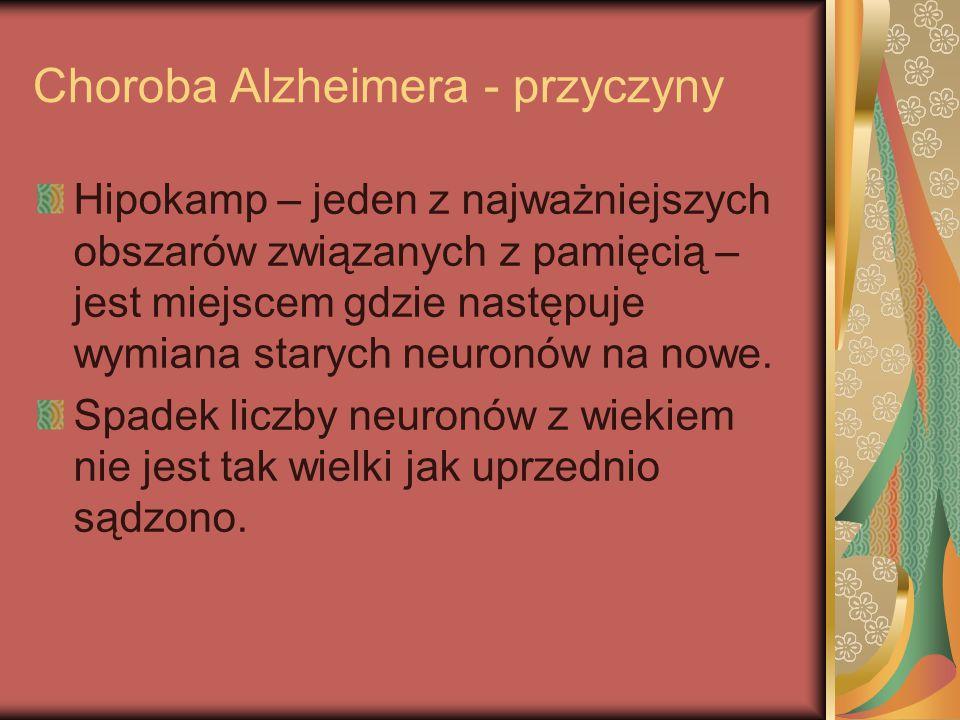 Choroba Alzheimera - przyczyny Hipokamp – jeden z najważniejszych obszarów związanych z pamięcią – jest miejscem gdzie następuje wymiana starych neuro