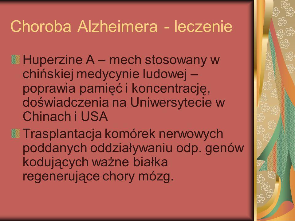 Choroba Alzheimera - leczenie Huperzine A – mech stosowany w chińskiej medycynie ludowej – poprawia pamięć i koncentrację, doświadczenia na Uniwersyte