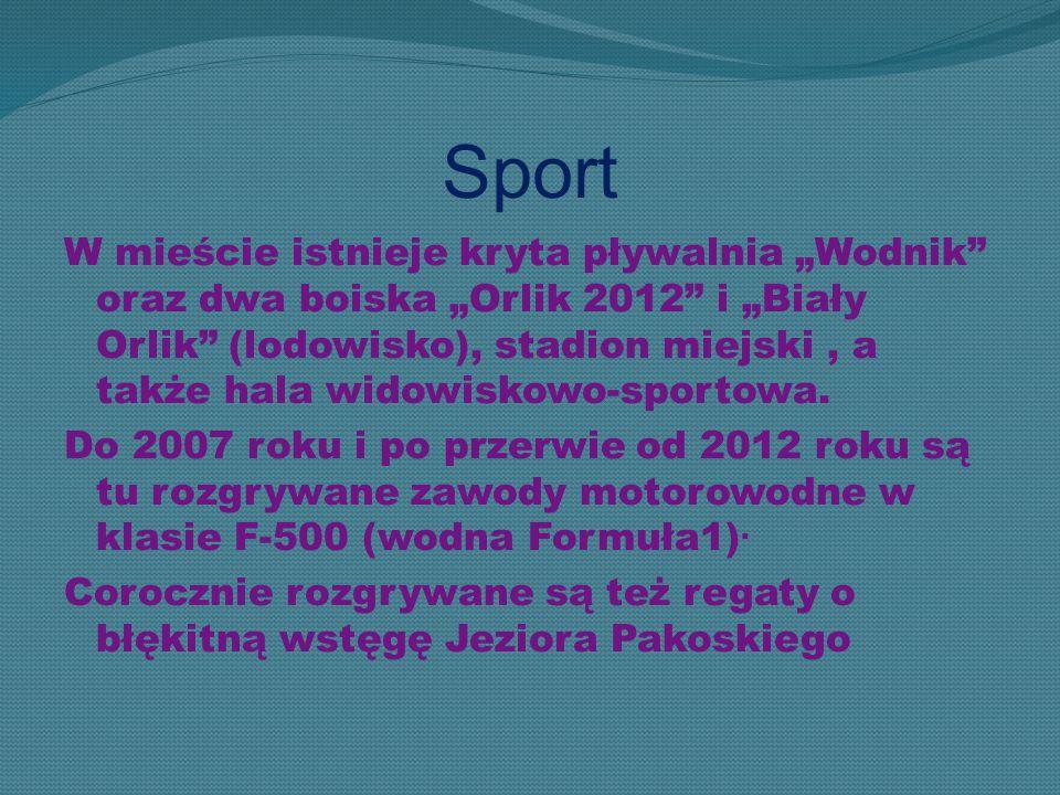 """Sport W mieście istnieje kryta pływalnia """"Wodnik"""" oraz dwa boiska """"Orlik 2012"""" i """"Biały Orlik"""" (lodowisko), stadion miejski, a także hala widowiskowo-"""