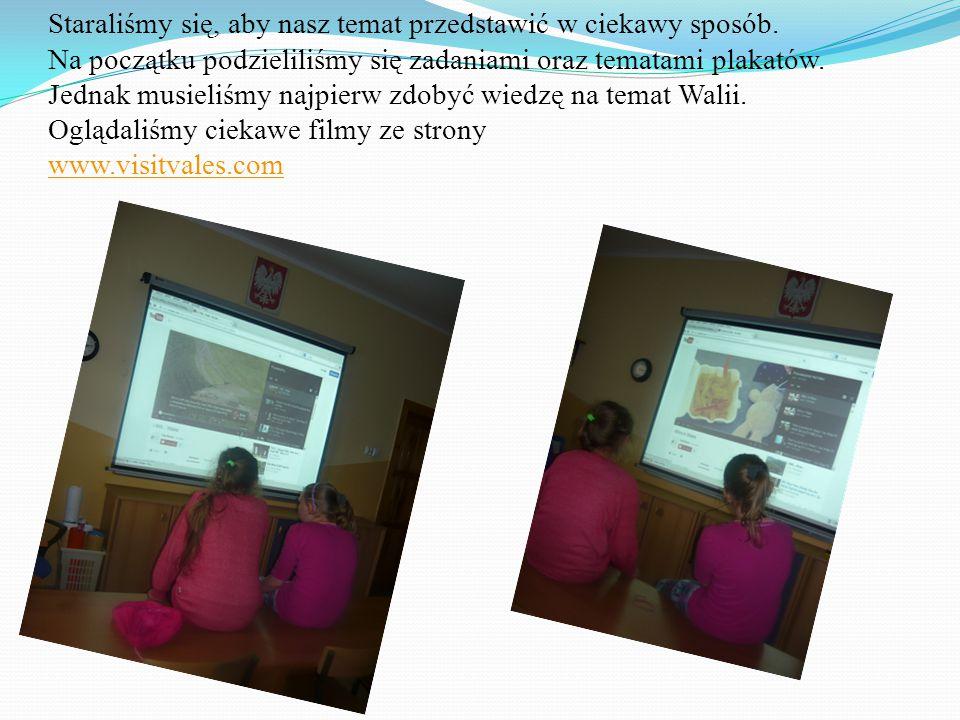Staraliśmy się, aby nasz temat przedstawić w ciekawy sposób. Na początku podzieliliśmy się zadaniami oraz tematami plakatów. Jednak musieliśmy najpier