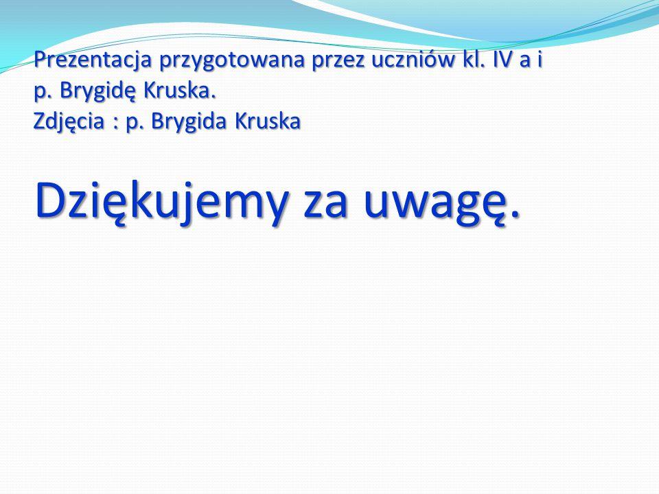 Prezentacja przygotowana przez uczniów kl. IV a i p. Brygidę Kruska. Zdjęcia : p. Brygida Kruska Dziękujemy za uwagę.