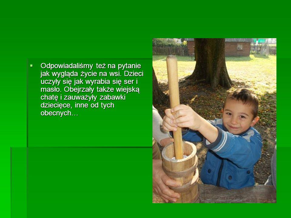  Odpowiadaliśmy też na pytanie jak wygląda życie na wsi. Dzieci uczyły się jak wyrabia się ser i masło. Obejrzały także wiejską chatę i zauważyły zab