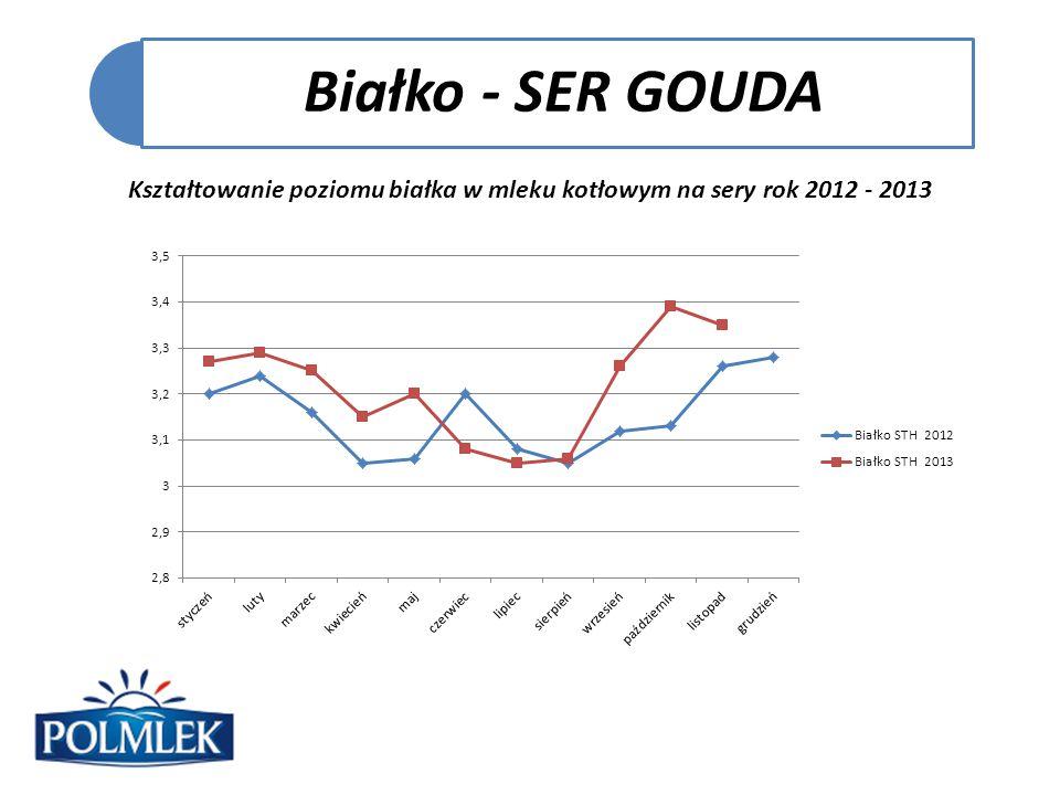 Białko - SER GOUDA Kształtowanie poziomu białka w mleku kotłowym na sery rok 2012 - 2013