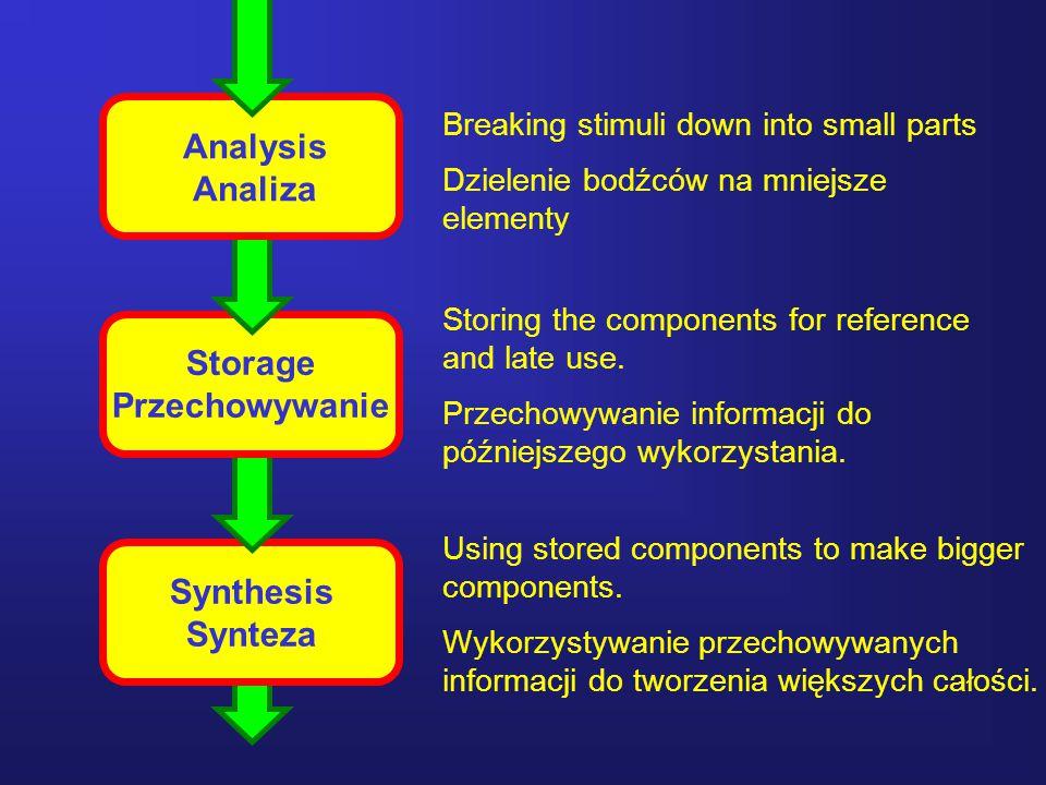 19 Analysis Analiza Storage Przechowywanie Synthesis Synteza Breaking stimuli down into small parts Dzielenie bodźców na mniejsze elementy Storing the components for reference and late use.