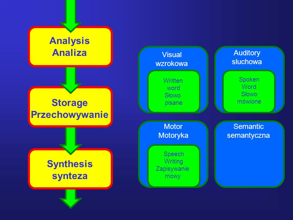 21 Analysis Analiza Storage Przechowywanie Synthesis synteza Visual wzrokowa Auditory sluchowa Motor Motoryka Semantic semantyczna Written word Słowo pisane Spoken Word Słowo mówione Speech Writing Zapisywanie mowy