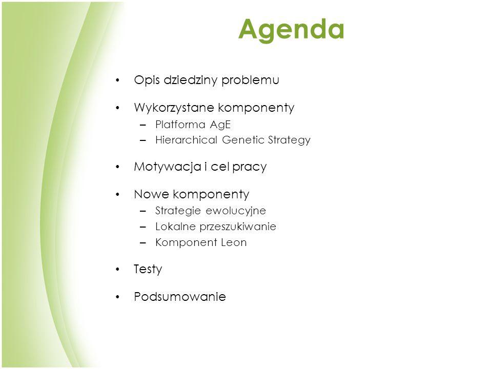 Agenda Opis dziedziny problemu Wykorzystane komponenty – Platforma AgE – Hierarchical Genetic Strategy Motywacja i cel pracy Nowe komponenty – Strategie ewolucyjne – Lokalne przeszukiwanie – Komponent Leon Testy Podsumowanie