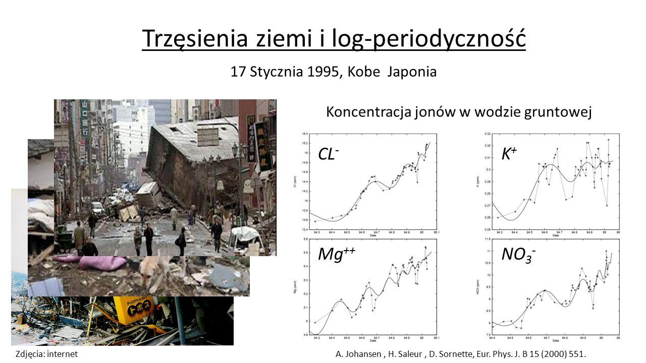 Samopodobieństwo struktur log-periodycznych P.Oświęcimka, S.