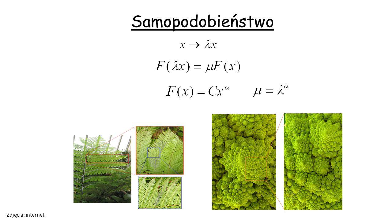 Przykład fraktala dyskretnego Zbiór Cantora Dla zoomu 3 p W ogólności: