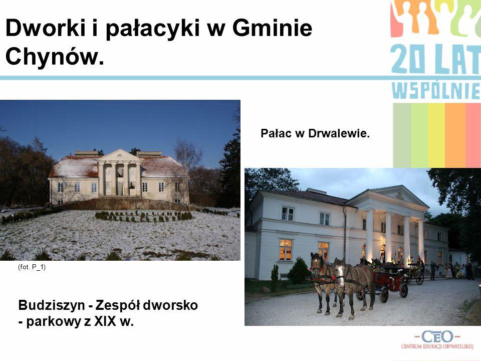 Budziszyn - Zespół dworsko - parkowy z XIX w. (fot. P_1) Pałac w Drwalewie. Dworki i pałacyki w Gminie Chynów.