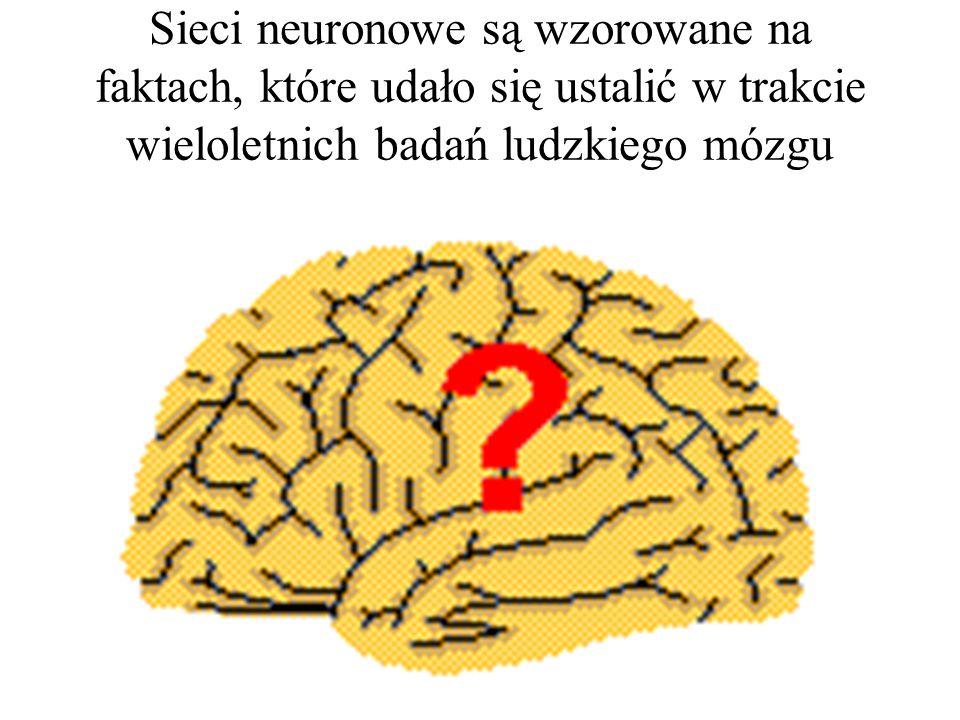 Omówimy teraz elementy, determinujące różne dostępne typy sieci neuronowych