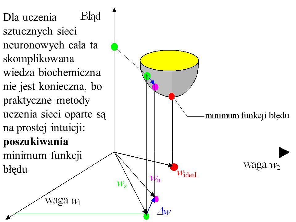 Mechanizmy biochemiczne zaangażowane w proces zapamiętywania wiedzy są raczej skomplikowane