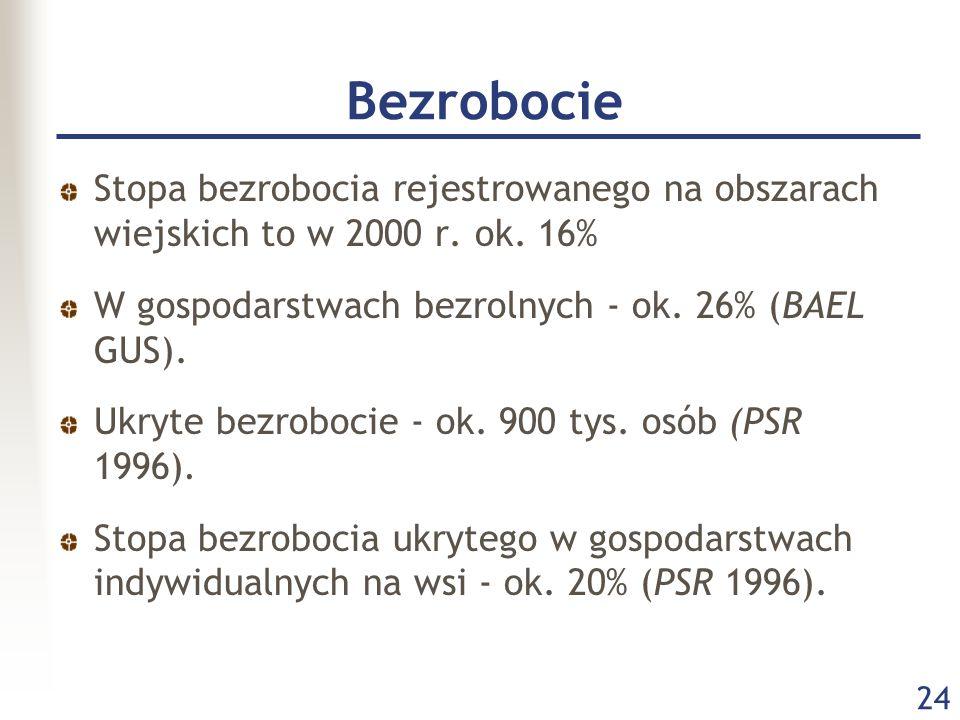 24 Bezrobocie Stopa bezrobocia rejestrowanego na obszarach wiejskich to w 2000 r. ok. 16% W gospodarstwach bezrolnych - ok. 26% (BAEL GUS). Ukryte bez