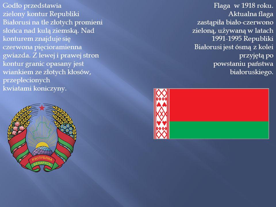 Godło przedstawia zielony kontur Republiki Białorusi na tle złotych promieni słońca nad kulą ziemską. Nad konturem znajduje się czerwona pięcioramienn