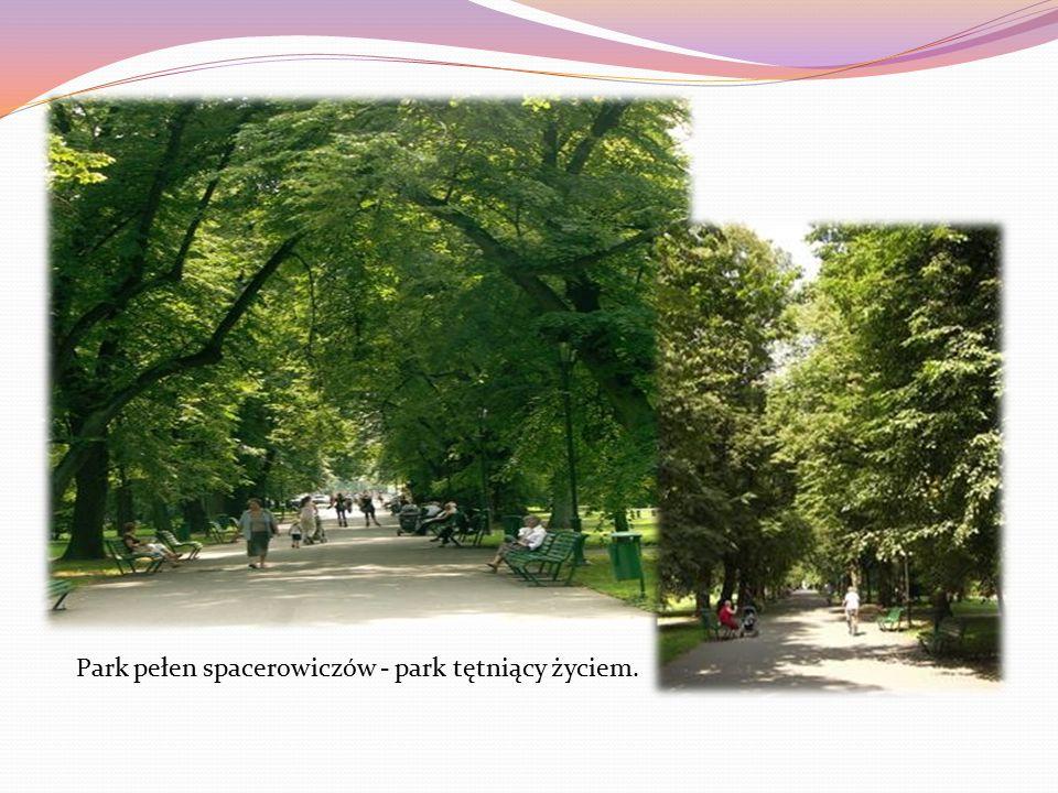 Park pełen spacerowiczów - park tętniący życiem.