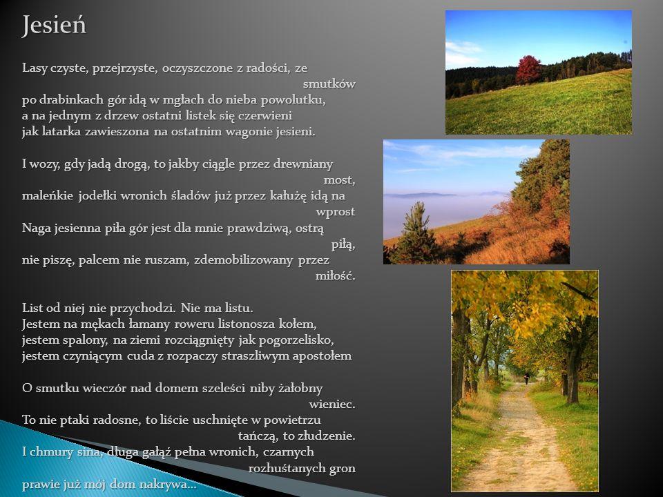 Jesień Lasy czyste, przejrzyste, oczyszczone z radości, ze smutków po drabinkach gór idą w mgłach do nieba powolutku, a na jednym z drzew ostatni list