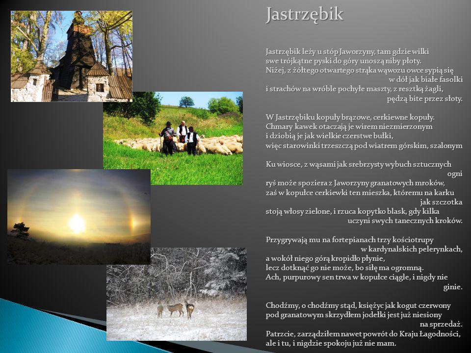 Jastrzębik Jastrzębik leży u stóp Jaworzyny, tam gdzie wilki swe trójkątne pyski do góry unoszą niby płoty. Niżej, z żółtego otwartego strąka wąwozu o