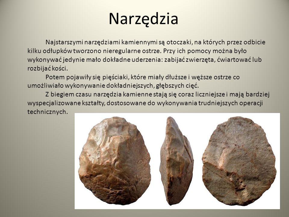 Narzędzia Najstarszymi narzędziami kamiennymi są otoczaki, na których przez odbicie kilku odłupków tworzono nieregularne ostrze. Przy ich pomocy można