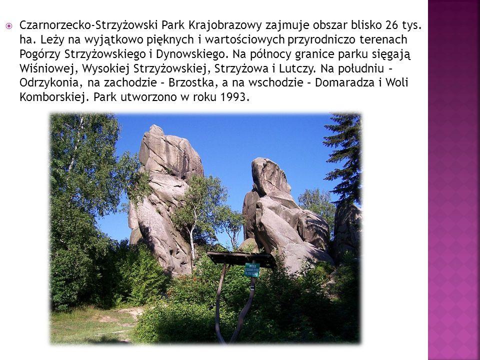  Czarnorzecko-Strzyżowski Park Krajobrazowy zajmuje obszar blisko 26 tys.