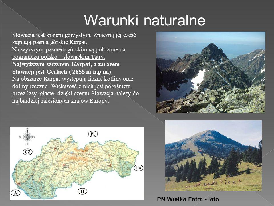 Warunki naturalne Słowacja jest krajem górzystym.Znaczną jej część zajmują pasma górskie Karpat.