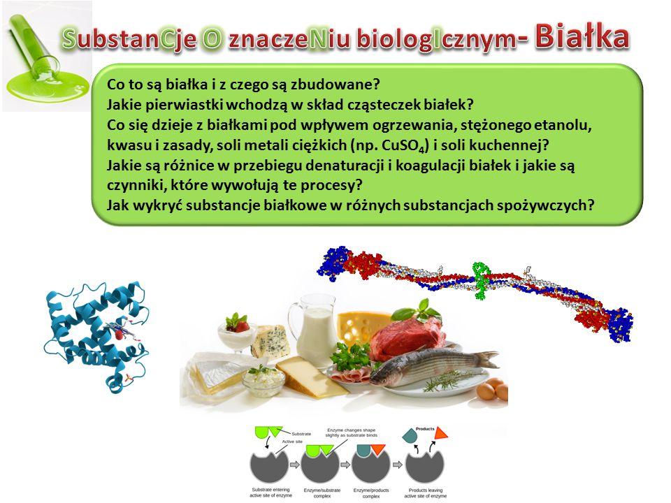 Co to są białka i z czego są zbudowane? Jakie pierwiastki wchodzą w skład cząsteczek białek? Co się dzieje z białkami pod wpływem ogrzewania, stężoneg
