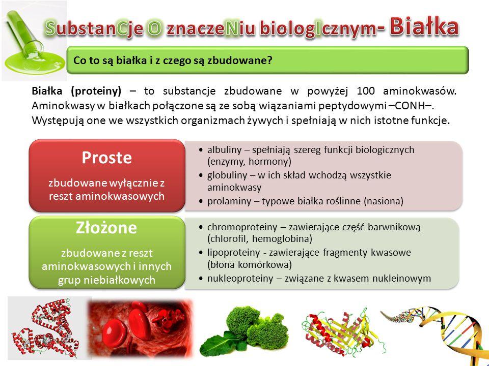 Co to są białka i z czego są zbudowane? Białka (proteiny) – to substancje zbudowane w powyżej 100 aminokwasów. Aminokwasy w białkach połączone są ze s