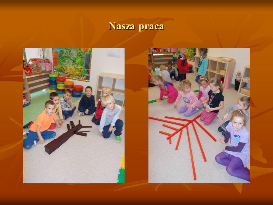 Zajęcia w ogrodzie przedszkolnym Zajęcia w ogrodzie przedszkolnym