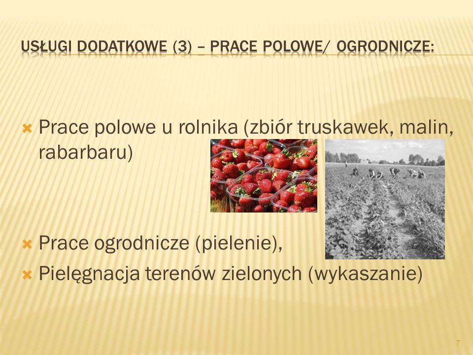  Prace polowe u rolnika (zbiór truskawek, malin, rabarbaru)  Prace ogrodnicze (pielenie),  Pielęgnacja terenów zielonych (wykaszanie) 7