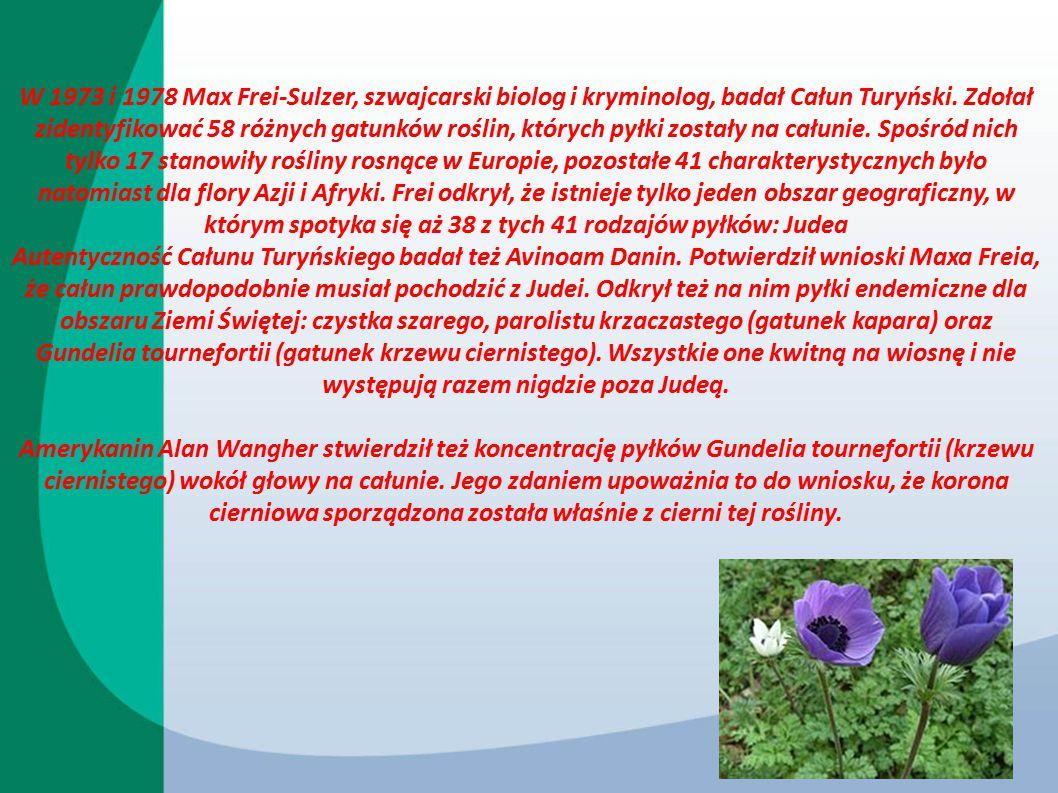W 1973 i 1978 Max Frei-Sulzer, szwajcarski biolog i kryminolog, badał Całun Turyński. Zdołał zidentyfikować 58 różnych gatunków roślin, których pyłki