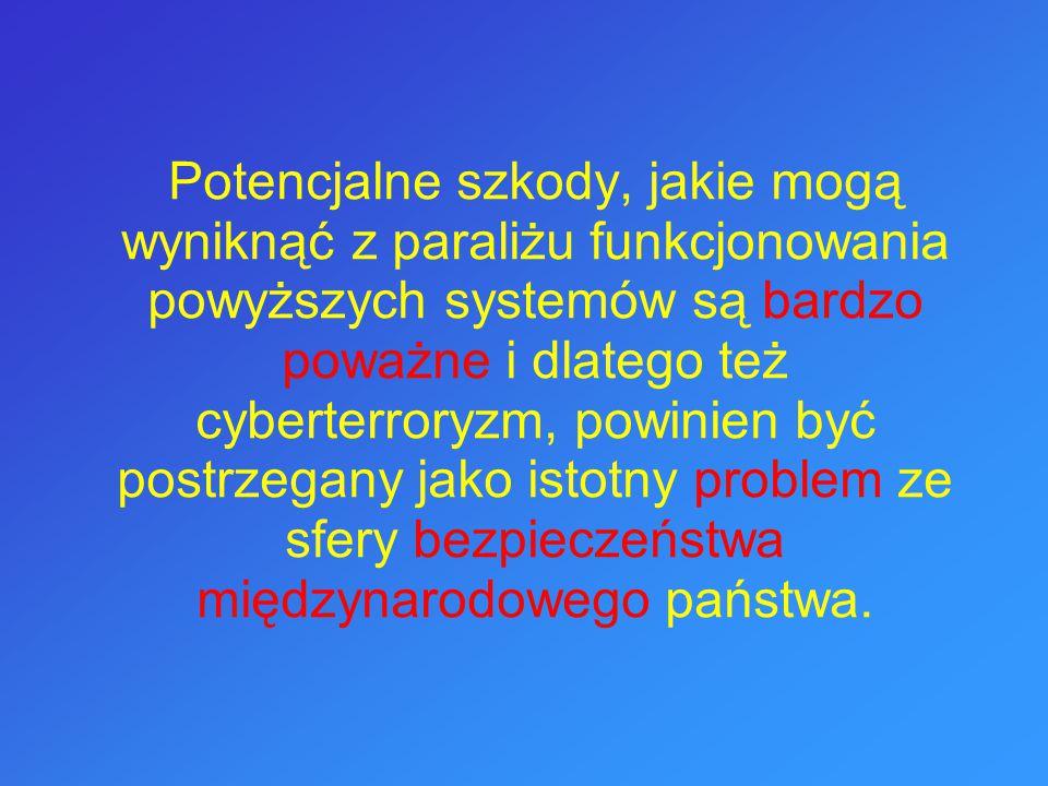 Potencjalne szkody, jakie mogą wyniknąć z paraliżu funkcjonowania powyższych systemów są bardzo poważne i dlatego też cyberterroryzm, powinien być pos