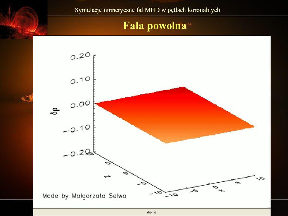 Symulacje numeryczne fal MHD w pętlach koronalnych Fala szybka