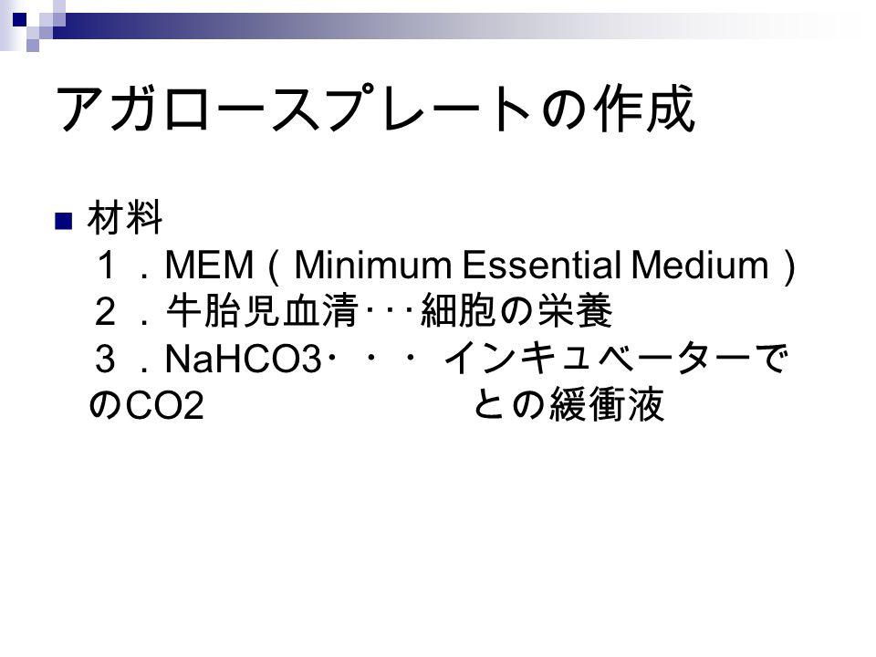 アガロースプレートの作成 材料 1. MEM ( Minimum Essential Medium ) 2.牛胎児血清・・・細胞の栄養 3. NaHCO3 ・・・インキュベーターで の CO2 との緩衝液